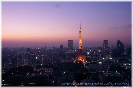 Tokyotower_2008_005