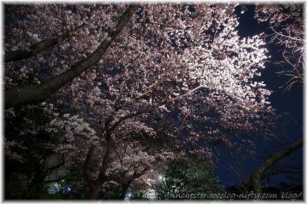 Chidorigahuchi_2008015