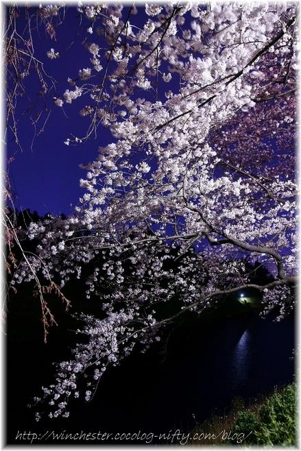 Chidorigahuchi_2008001