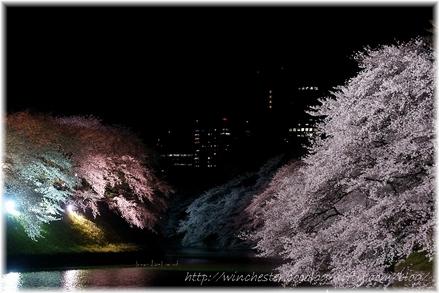 Chidorigahuchi_2008018