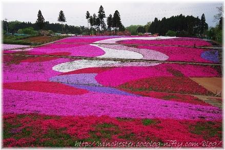 Hitujiyama_2008007
