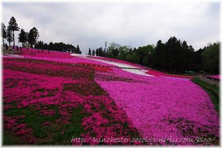 Hitujiyama_2008009