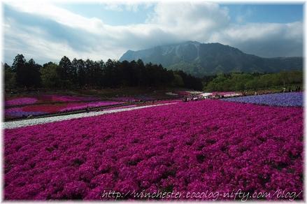 Hitujiyama_2008002