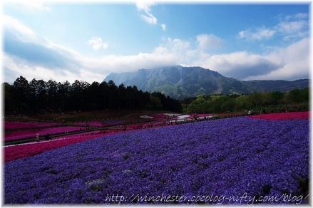 Hitujiyama_2008013