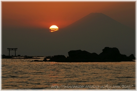 Morito_kaigan_2008_002
