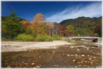 Autumn_leaves_02_028
