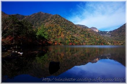 Autumn_leaves_02_008