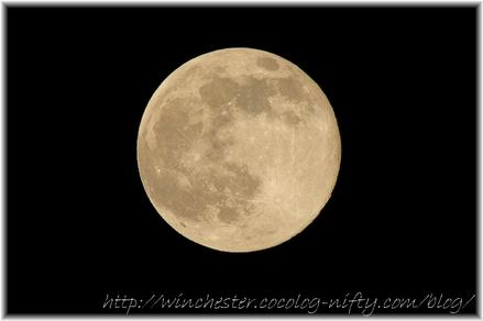 Moon_1113