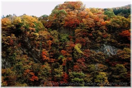 Oochigawa_2008002