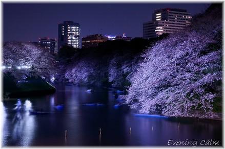 Chidorigahuchi_2009002
