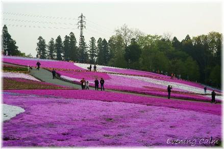 Hitujiyama_park_2009007