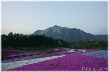 Hitujiyama_park_2009003
