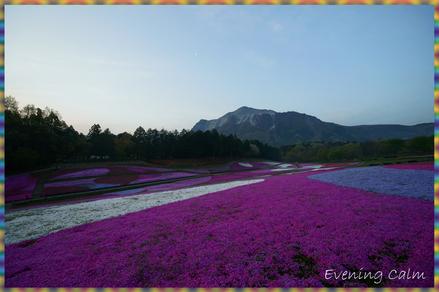 Hitujiyama_park_2009012