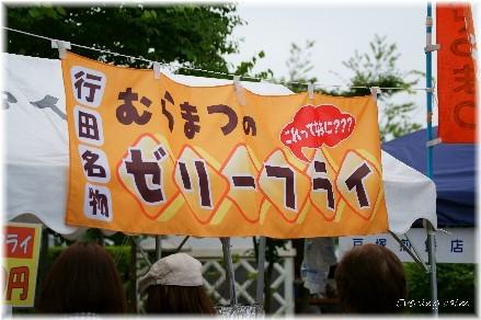 Kodaihasu_2009019